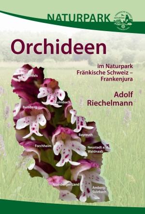 Fränkische Orchideen – Schönheit pur