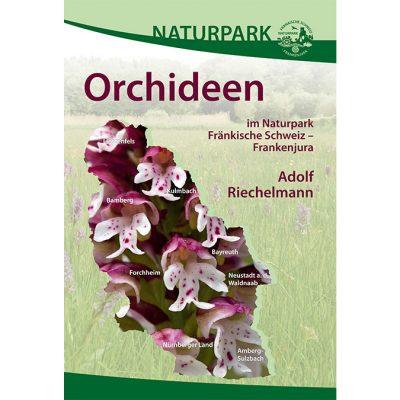 Orchideen im Naturpark Fränkische Schweiz - Frankenjura